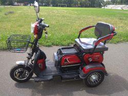 Купить трицикл электрический в Киеве Elwinn ETB-122